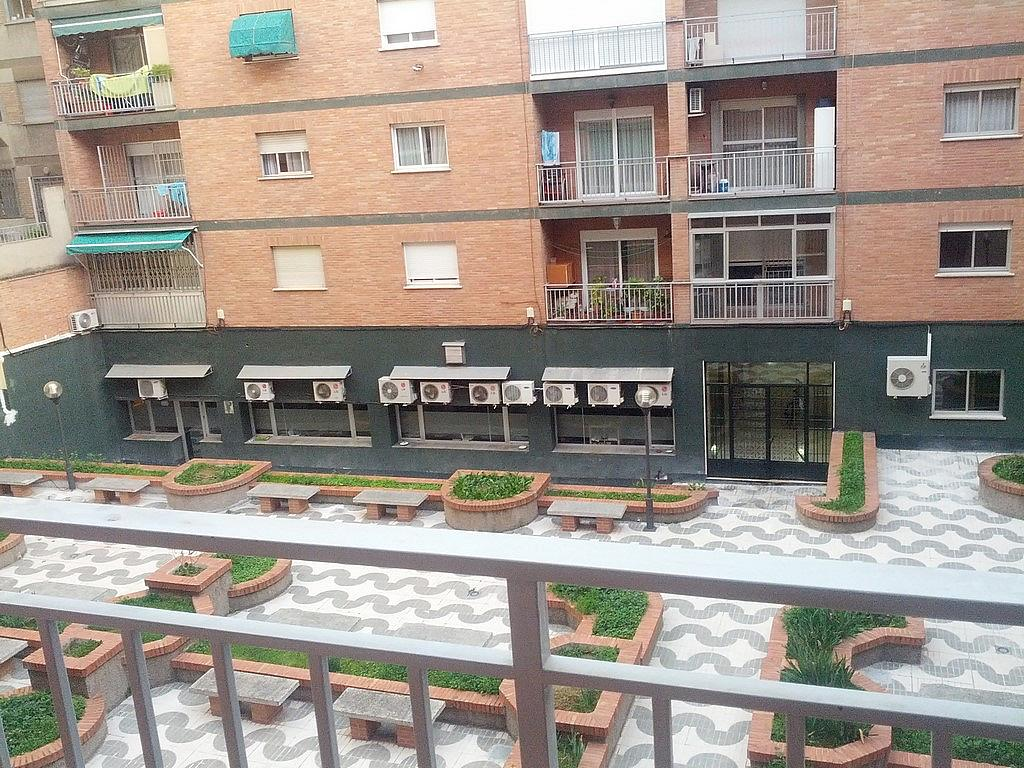 Piso en alquiler en calle Doctor Sánchez Mariscal, Beiro en Granada - 237458448