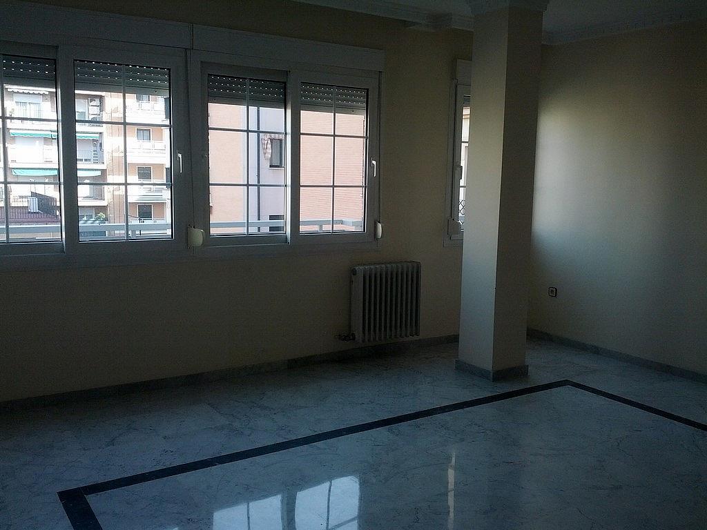 Piso en alquiler en calle Constitución, Beiro en Granada - 240399244