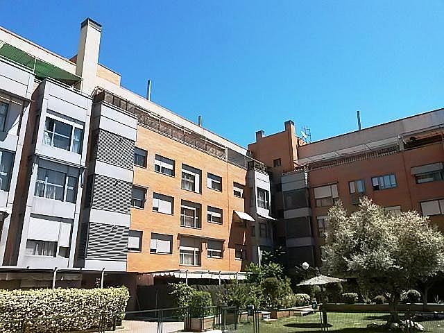 Zonas comunes - Piso en alquiler en calle Pirra, Canillejas en Madrid - 286294668