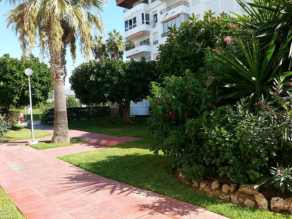 Apartamento en alquiler en urbanización Laguna Beach, Torrox-Costa en Torrox - 135847509