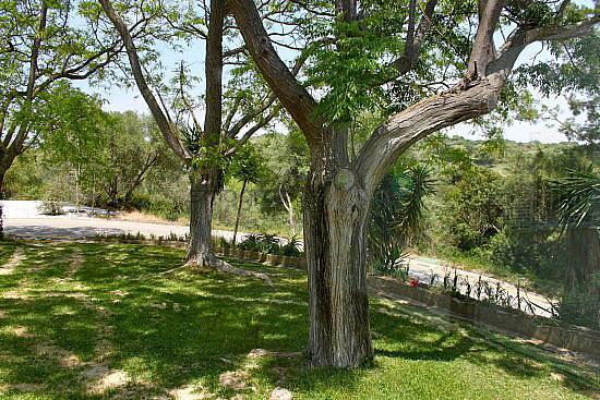 Foto20 - Apartamento en alquiler en Sotogrande - 351835451