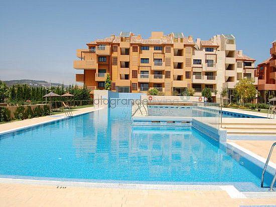 Foto 5 - Apartamento en alquiler en Sotogrande - 354209722