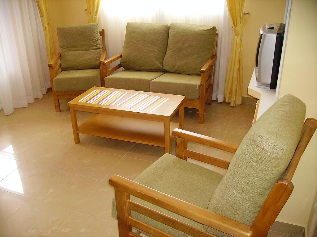 Salón - Apartamento en alquiler en travesía Isla Mallorca, Seseña Nuevo - 252912332