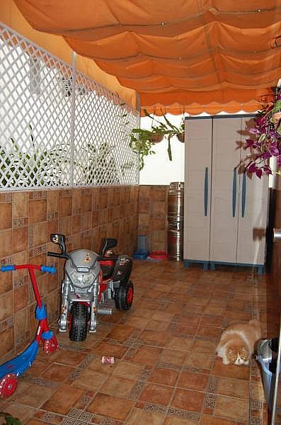 Foto - Piso en alquiler en calle San Felipe, Centro Histórico - Plaza España en Cádiz - 249771771