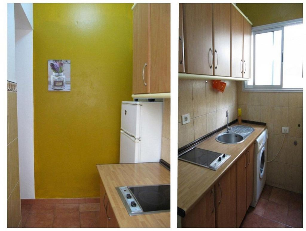 Piso en alquiler en calle Arco, Centro en Palmas de Gran Canaria(Las) - 303474643