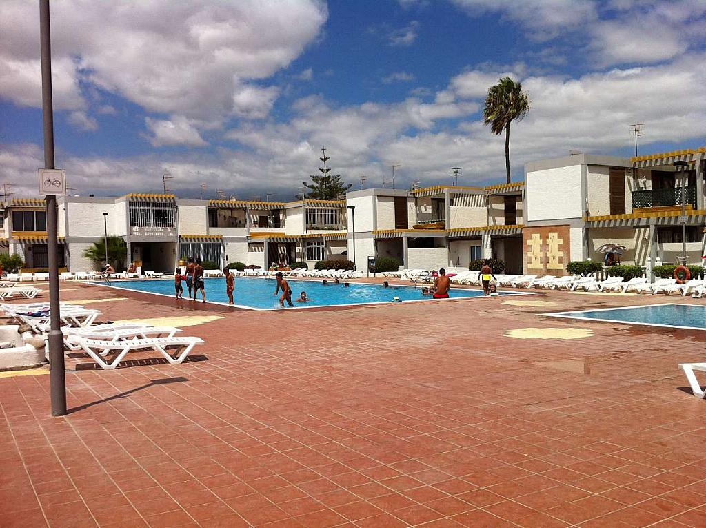 Apartamento en alquiler en calle Diana, Galletas, Las - 250450842