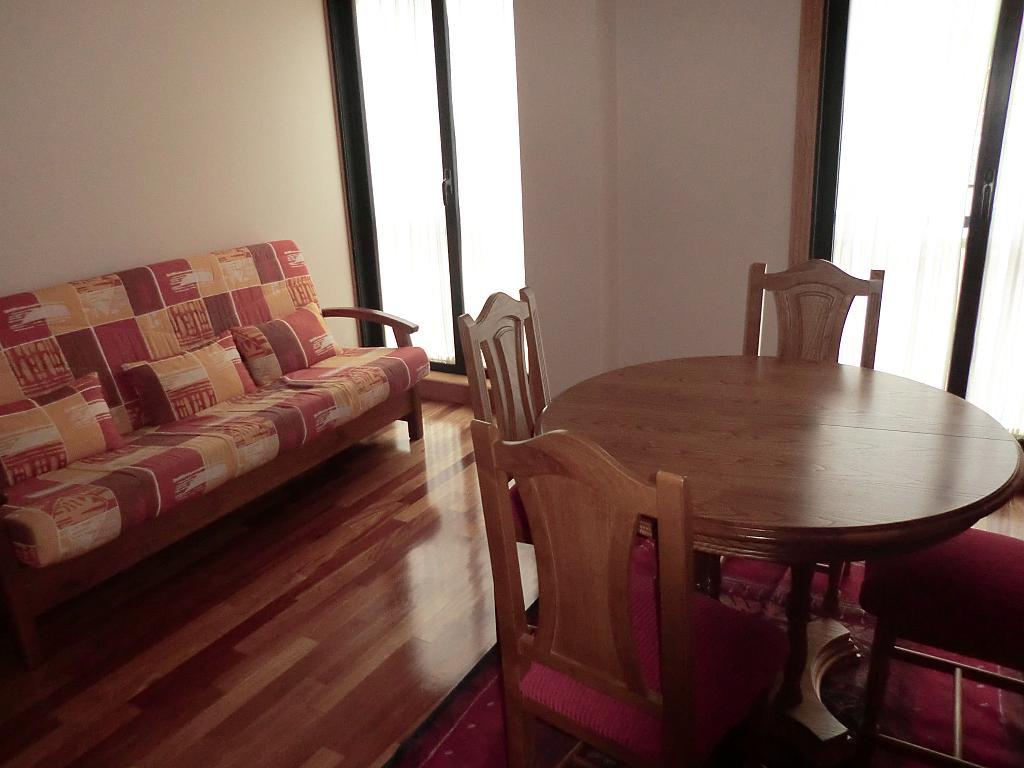 Piso en alquiler en barrio Manuel Murguia, Riazor-Labañou-Los Rosales en Coruña (A) - 311819925