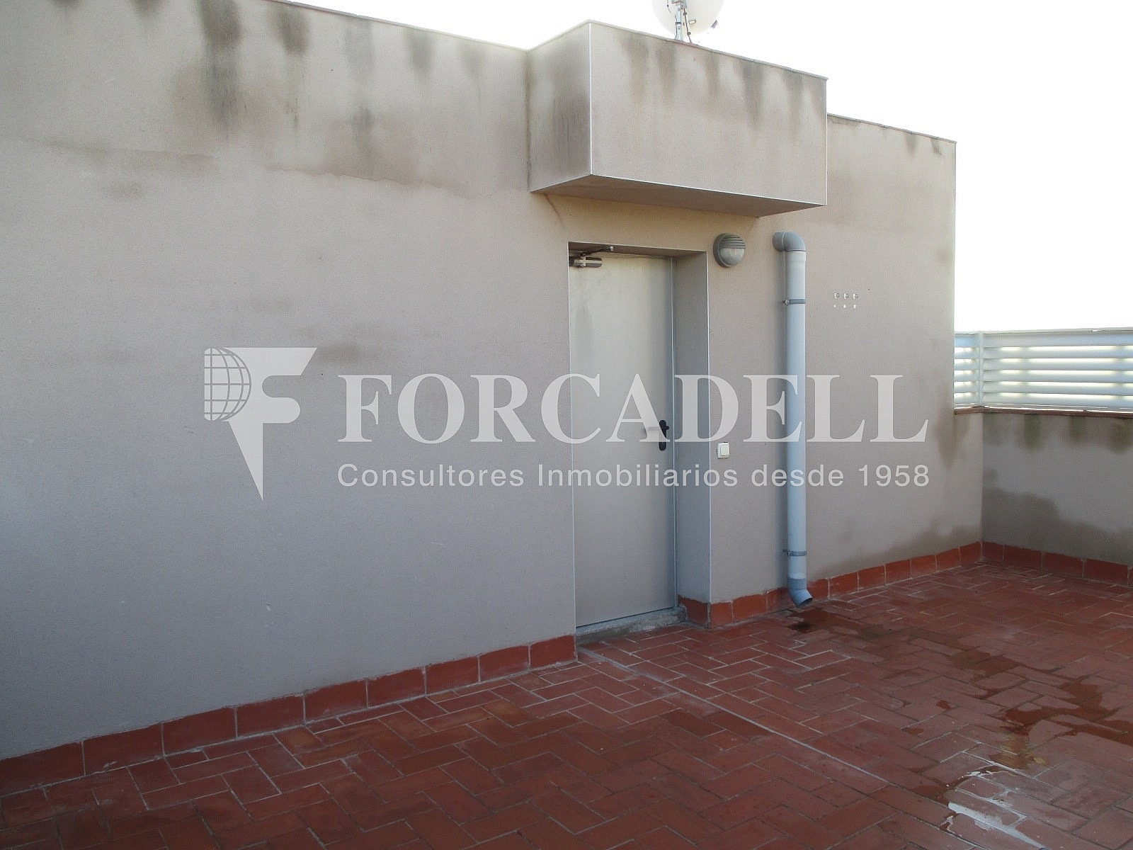 IMG_2694 - Piso en alquiler en calle Merce Rodoreda, Can clota en Esplugues de Llobregat - 331432119