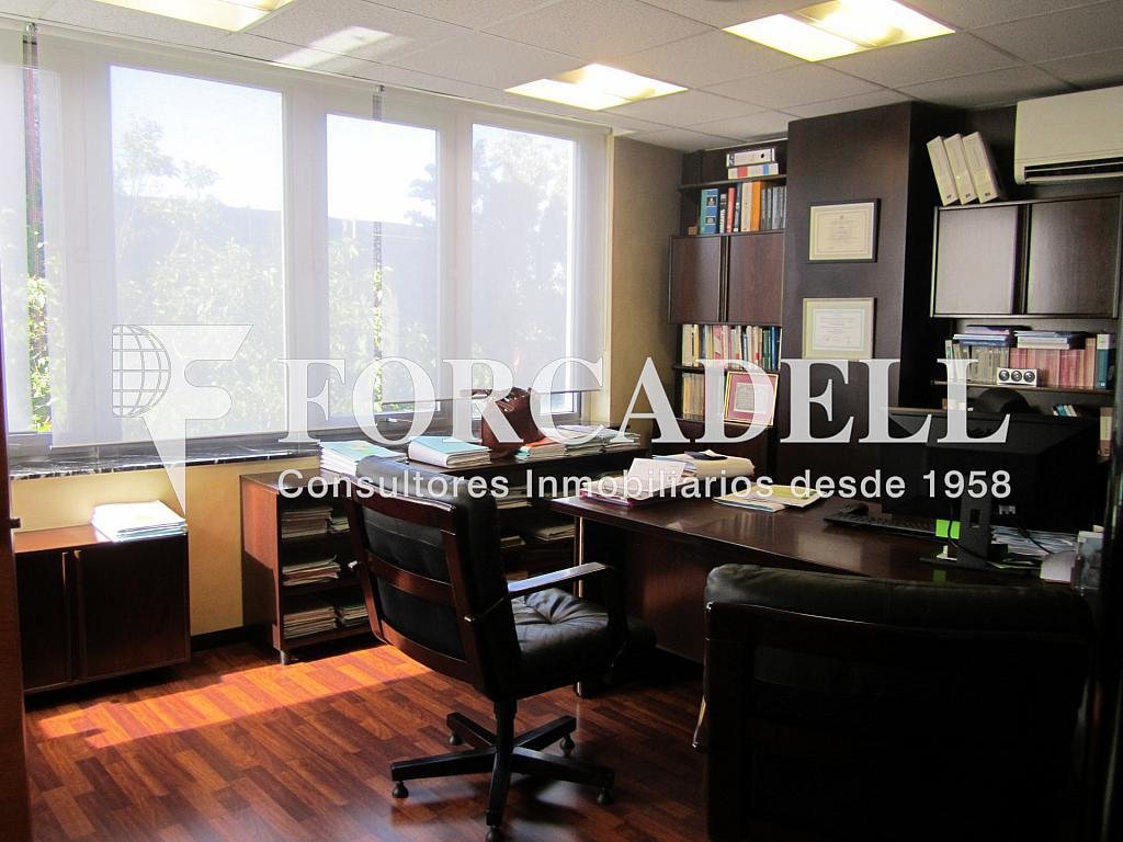 IMG_6118 - Oficina en alquiler en calle Folch i Torres, Granollers Centre en Granollers - 260860495