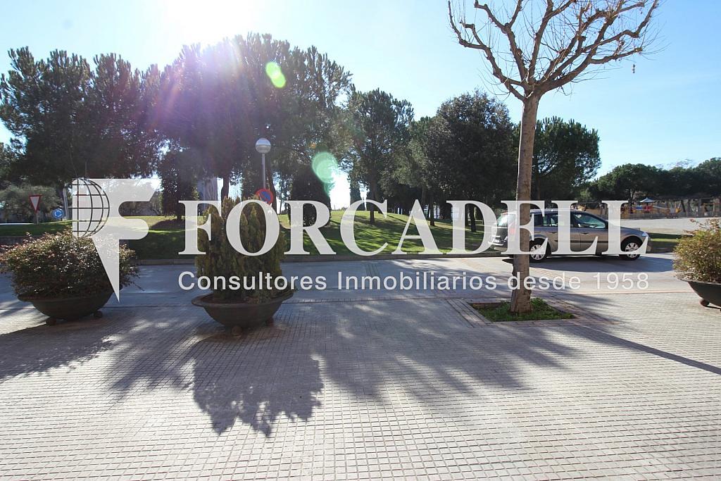 IMG_5713 - Local comercial en alquiler en calle Ajuntament, Lliçà de Vall - 260866162