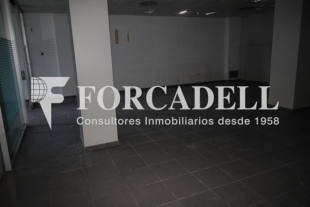 IMG_6094 - Local comercial en alquiler en calle General Riera, Nord en Palma de Mallorca - 261270851