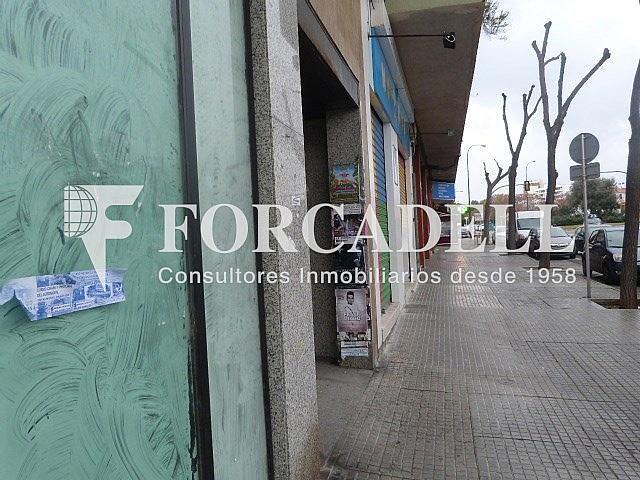 P1120540 - Local comercial en alquiler en calle Salvador Dali, Son Cotoner en Palma de Mallorca - 261272618