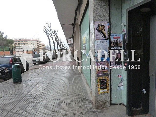 P1120541 - Local comercial en alquiler en calle Salvador Dali, Son Cotoner en Palma de Mallorca - 261272621