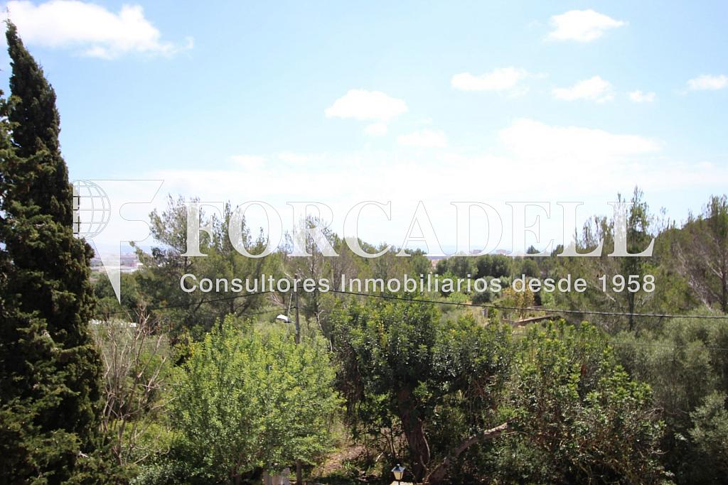 IMG_6872 - Masía en alquiler en calle Hospitalet, Son Anglada en Palma de Mallorca - 325983312