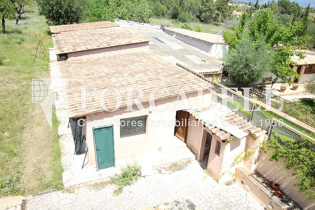 IMG_6876 - Masía en alquiler en calle Hospitalet, Son Anglada en Palma de Mallorca - 325983321