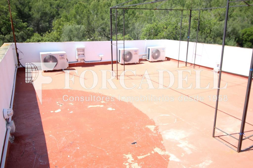 IMG_6879 - Masía en alquiler en calle Hospitalet, Son Anglada en Palma de Mallorca - 325983324