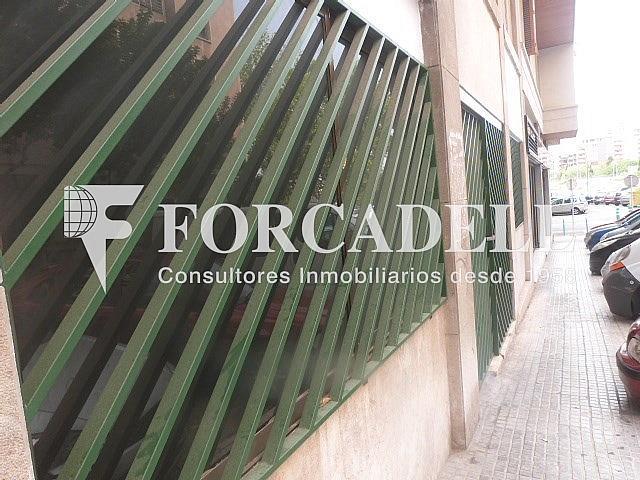 101 - Oficina en alquiler en calle Francisco Rover, Urbanitzacions Llevant en Palma de Mallorca - 261266801