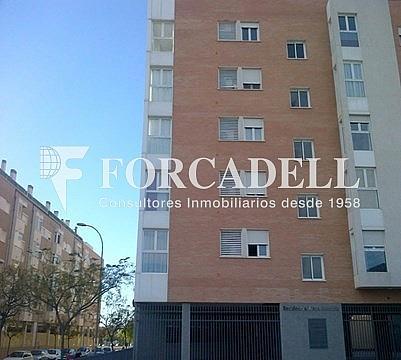 Image (5) - Local comercial en alquiler en calle Montesinoslocal, Garbinet en Alicante/Alacant - 260869803