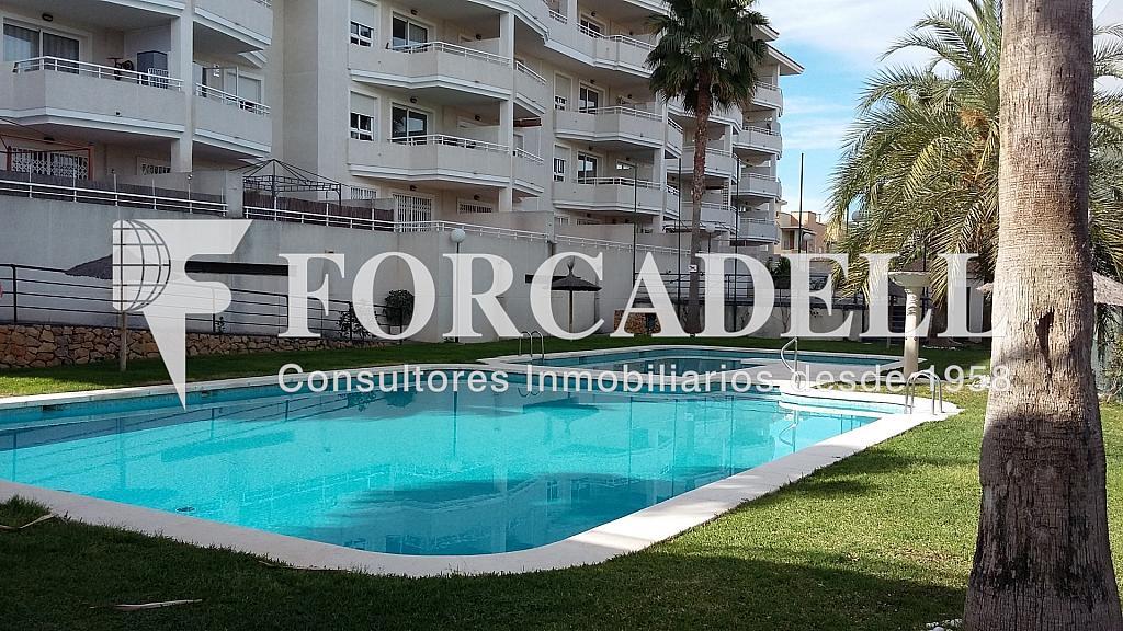 20160411_103051 - Piso en alquiler en calle Britania, Albufereta en Alicante/Alacant - 326408491