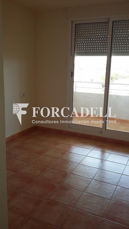 20160411_113708 - Piso en alquiler en calle Britania M, Albufereta en Alicante/Alacant - 265967266