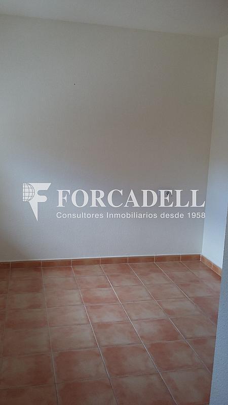 20160411_114013 - Piso en alquiler en calle Britania M, Albufereta en Alicante/Alacant - 265967275