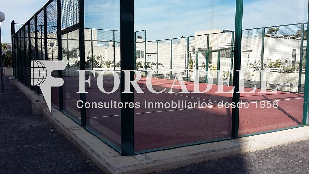 20160411_102809 - Piso en alquiler en calle Britania M, Albufereta en Alicante/Alacant - 265967284