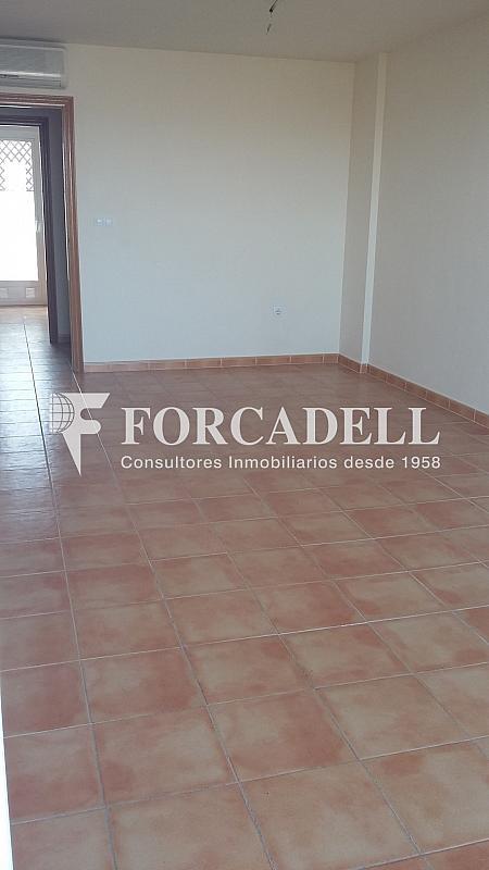 20160411_112857 - Piso en alquiler en calle Britania M, Albufereta en Alicante/Alacant - 265967296
