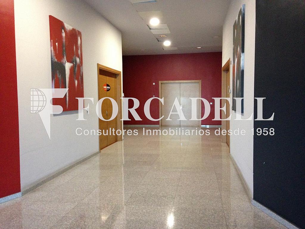 IMG_0827 - Oficina en alquiler en calle Bobinadora, Mataró - 263451588