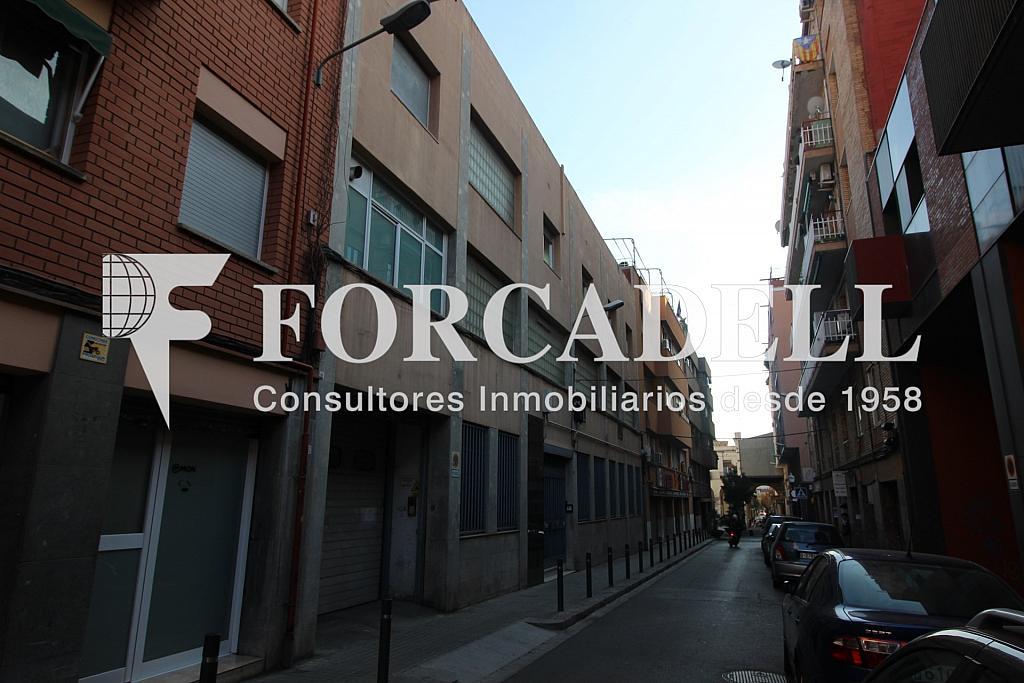 IMG_4075 - Oficina en alquiler en calle Cortit, Sant andreu en Barcelona - 263454819