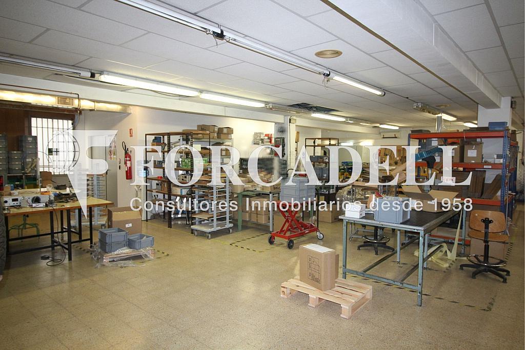 IMG_4081 - Oficina en alquiler en calle Cortit, Sant andreu en Barcelona - 263454828