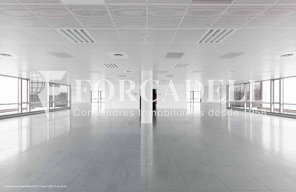 Interior oficina - Oficina en alquiler en calle De la Fama, Cornellà de Llobregat - 263454894