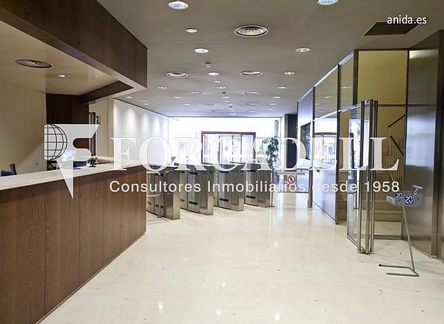Hall - Oficina en alquiler en calle Avila, El Parc i la Llacuna en Barcelona - 263455536