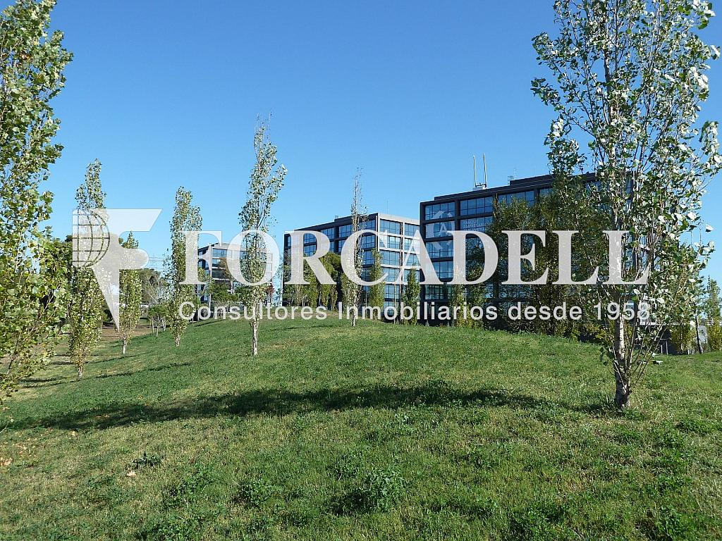 P1020452 - Oficina en alquiler en calle De Can Ametller, Sant Cugat del Vallès - 263455896