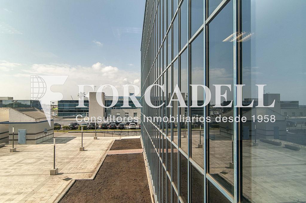 _DSC8937 - Oficina en alquiler en calle Garrotxa, Prat de Llobregat, El - 263456118