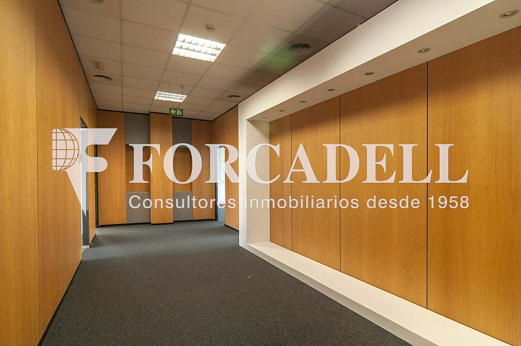 _DSC8959 - Oficina en alquiler en calle Garrotxa, Prat de Llobregat, El - 263456127