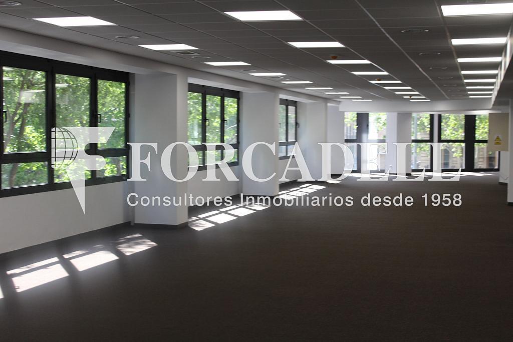 Planta en reforma - Oficina en alquiler en calle Sant Pere, Eixample dreta en Barcelona - 263456631