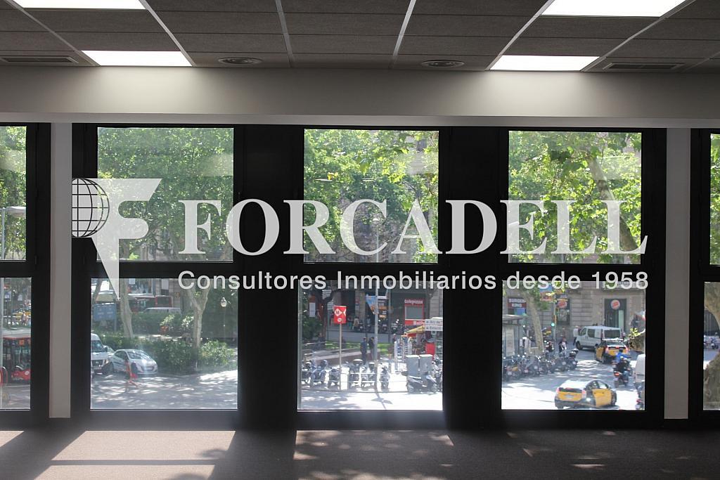 IMG_5073 - Oficina en alquiler en calle Sant Pere, Eixample dreta en Barcelona - 278703956