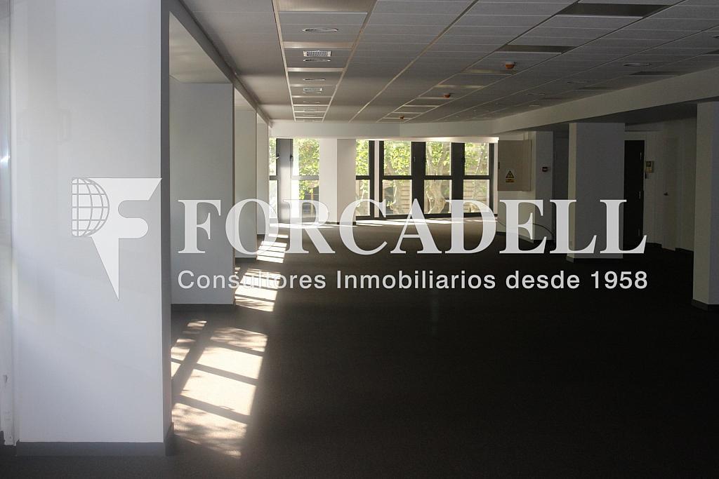 IMG_5089 - Oficina en alquiler en calle Sant Pere, Eixample dreta en Barcelona - 278703974