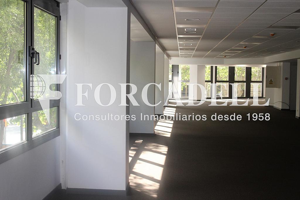 IMG_5090 - Oficina en alquiler en calle Sant Pere, Eixample dreta en Barcelona - 278703977