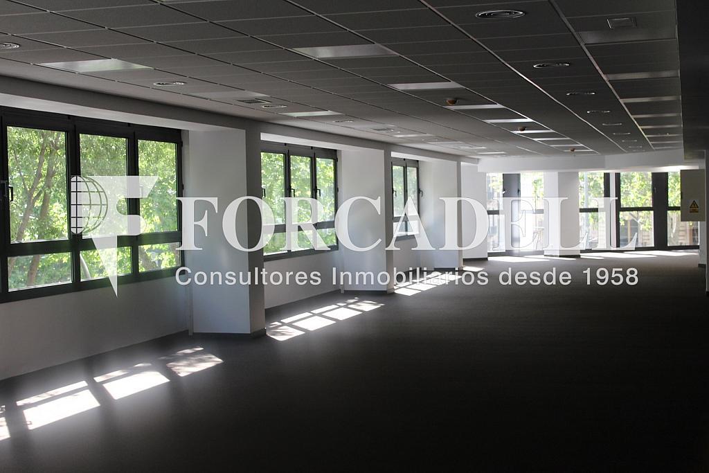 IMG_5092 - Oficina en alquiler en calle Sant Pere, Eixample dreta en Barcelona - 278703983