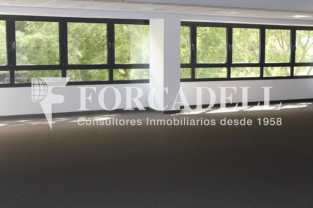 IMG_5093 - Oficina en alquiler en calle Sant Pere, Eixample dreta en Barcelona - 278703986
