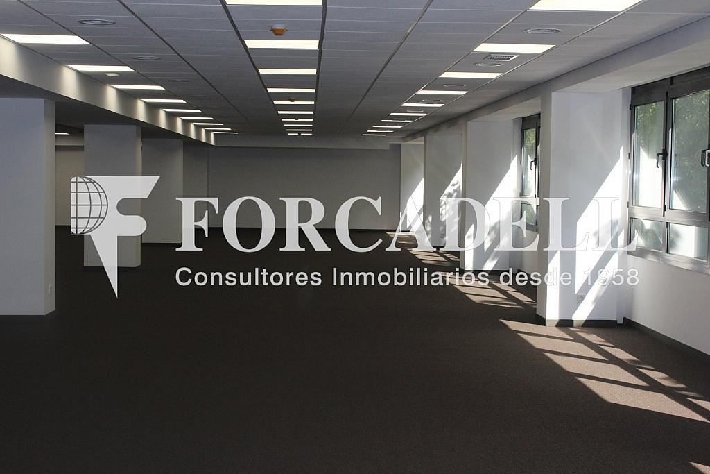 IMG_5094 - Oficina en alquiler en calle Sant Pere, Eixample dreta en Barcelona - 278703989