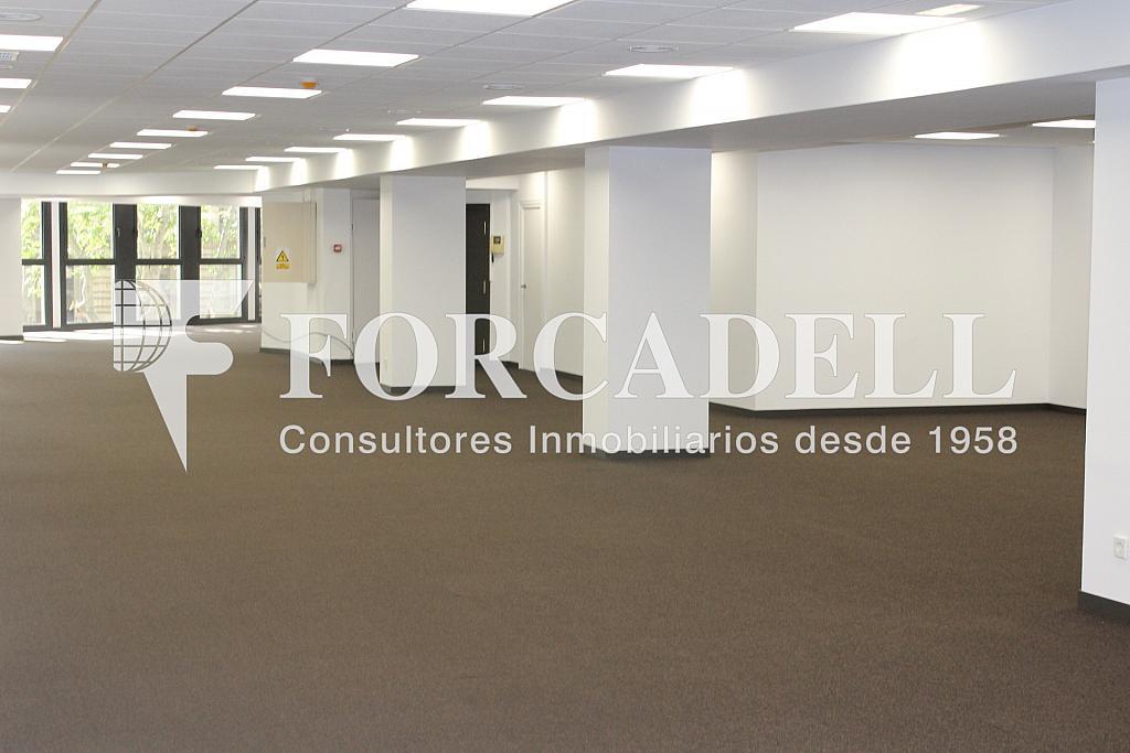 IMG_5101 - Oficina en alquiler en calle Sant Pere, Eixample dreta en Barcelona - 278704010
