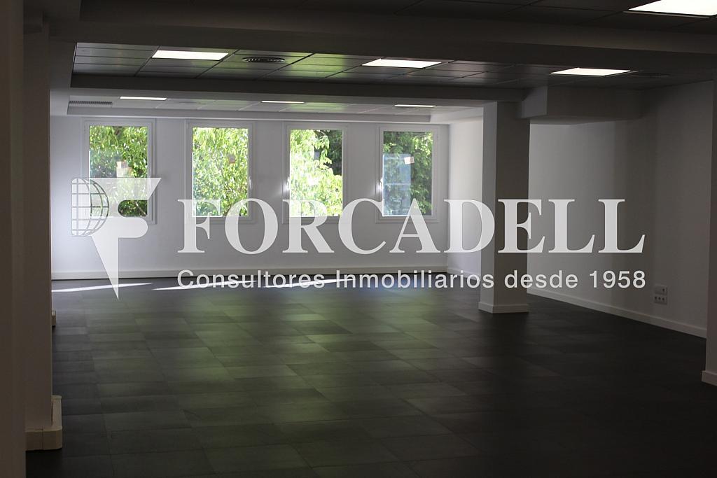 IMG_4810 - Oficina en alquiler en calle Entença, Eixample esquerra en Barcelona - 272293600