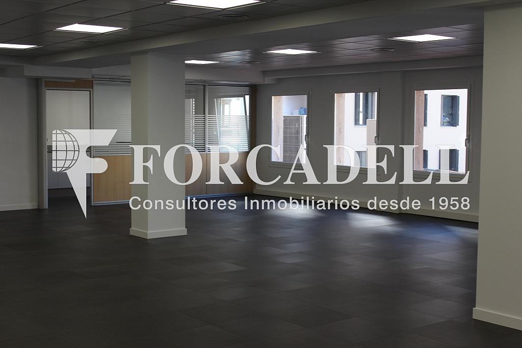 IMG_4809 - Oficina en alquiler en calle Entença, Eixample esquerra en Barcelona - 272293603