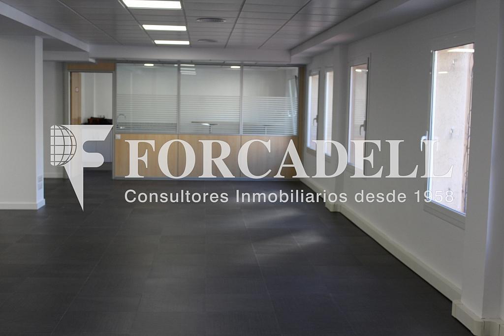 IMG_4805 - Oficina en alquiler en calle Entença, Eixample esquerra en Barcelona - 272293606