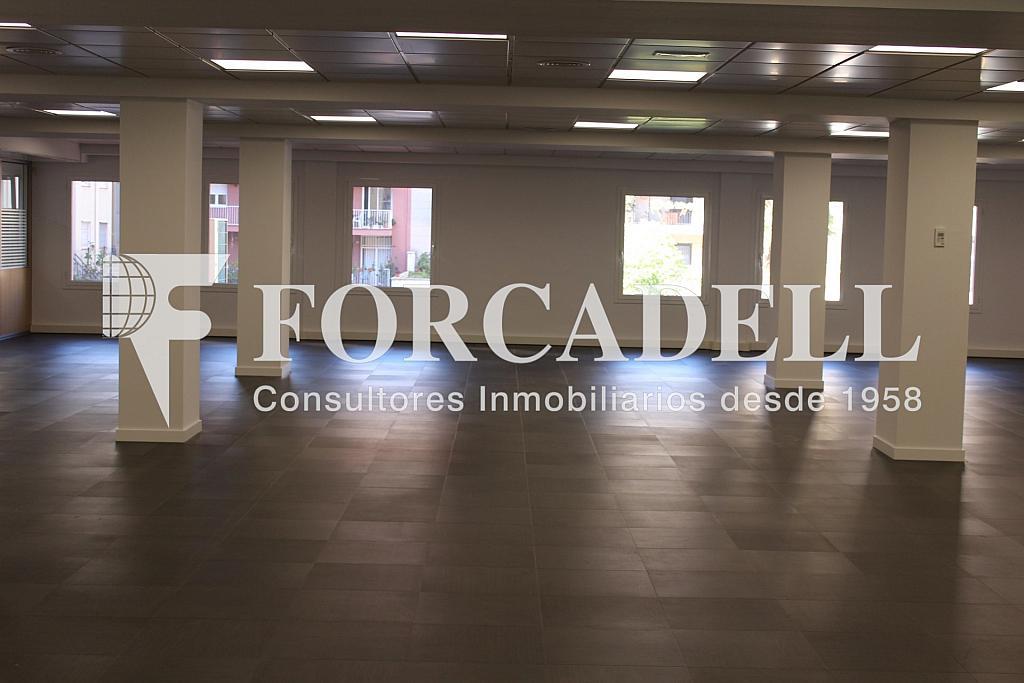 IMG_4811 - Oficina en alquiler en calle Entença, Eixample esquerra en Barcelona - 272293609