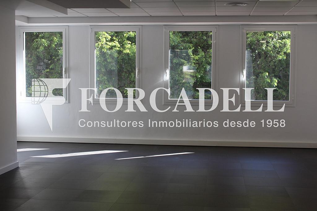 IMG_4813 - Oficina en alquiler en calle Entença, Eixample esquerra en Barcelona - 272293615