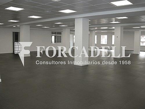 Despacho-alquiler-entenca95-6 - Oficina en alquiler en calle Entença, Eixample esquerra en Barcelona - 333906757