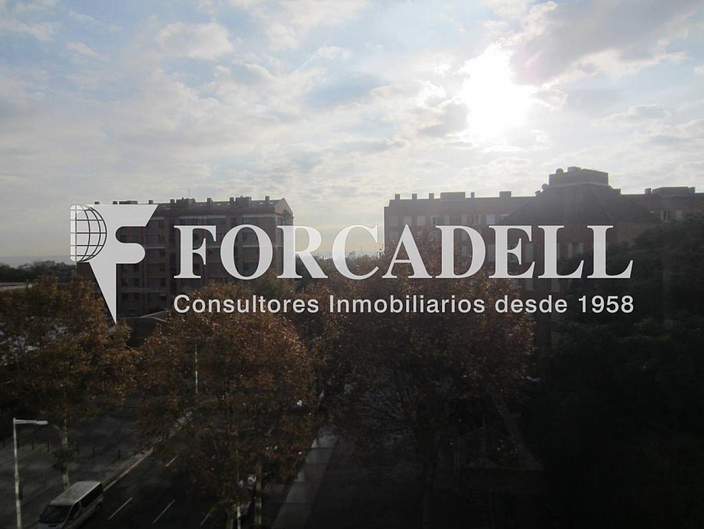 IMG_0303 - Oficina en alquiler en calle Rosa Sensat, La Vila Olímpica en Barcelona - 263424150